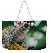 Squirrel Monkey Looking Up Weekender Tote Bag