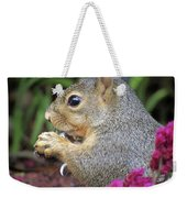 Squirrel - Morning Snack 02 Weekender Tote Bag