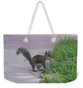 Squirrel Nuts Weekender Tote Bag