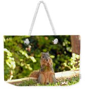 Squirrel On A Log Weekender Tote Bag