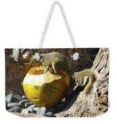 Squirrel On The Coconut Weekender Tote Bag