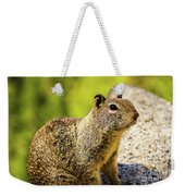 Squirrel On The Rock Weekender Tote Bag