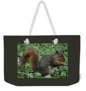 Squirrel Portrait # 6 Weekender Tote Bag