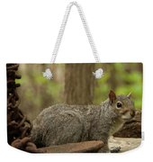 Squirrel With Anchor Weekender Tote Bag