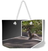 Squirrel World Weekender Tote Bag