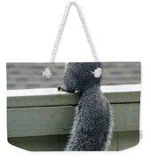 Squirrelart #2 Weekender Tote Bag