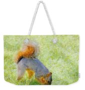 Squirrelly Weekender Tote Bag