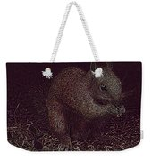 Squirrely Art Weekender Tote Bag