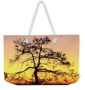 St Johns River Tree Weekender Tote Bag