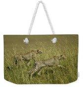 Stalking Cheetahs Weekender Tote Bag