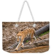 Stalking Tiger - Bengal Weekender Tote Bag