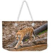 Stalking Tiger - Bengal Weekender Tote Bag