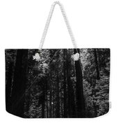 Star In The Forrest Weekender Tote Bag