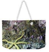 Starfish On A Coral Reef Weekender Tote Bag