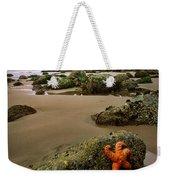Starfish On The Rocks Weekender Tote Bag