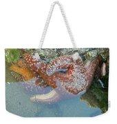 Starfish Sandwhich Weekender Tote Bag