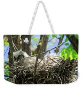 Staring From Its Nest Weekender Tote Bag