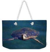 Staring Turtle Weekender Tote Bag