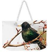 Starling Weekender Tote Bag
