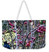 Stellar Jay In Crab Apples Weekender Tote Bag