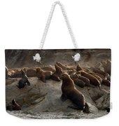 Stellers Sea Lions Eumetopias Jubatus Weekender Tote Bag