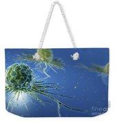 Stem Cells Weekender Tote Bag