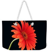 Stemming Beauty Weekender Tote Bag