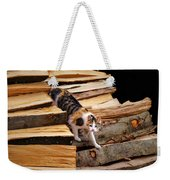 Stepping Down - Calico Cat On Beech Woodpile Weekender Tote Bag