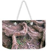 Steps With Roots Weekender Tote Bag
