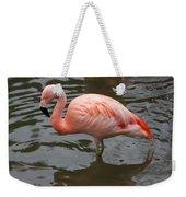 Stern Flamingo Weekender Tote Bag