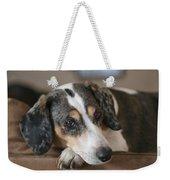 Stewie - Family Dog Weekender Tote Bag