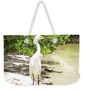 Still Looking For Lunch Gp Weekender Tote Bag