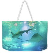 Sting Ray And Shark Weekender Tote Bag
