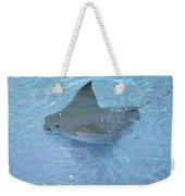 Sting Ray Weekender Tote Bag