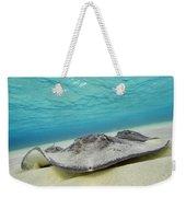 Stingrays Under Water Weekender Tote Bag