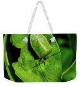 Stink Bug On Leaf Weekender Tote Bag