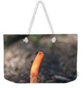 Stinkhorn And Flies Feeding Weekender Tote Bag