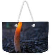 Stinkhorn Fungus With Fly Feeding Weekender Tote Bag