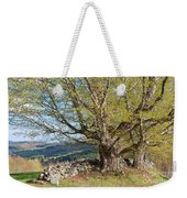 Stone Wall Spring Landscape Weekender Tote Bag