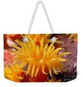 Stony Cup Coral Weekender Tote Bag