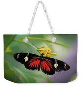 Butterfly, Stop And Smell The Flowers Weekender Tote Bag by Cindy Lark Hartman