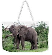 Stop And Stare Weekender Tote Bag