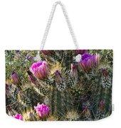 Strawberry Hedgehog Cactus  Weekender Tote Bag