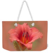 Strawberry Shortcake - Daylily Weekender Tote Bag