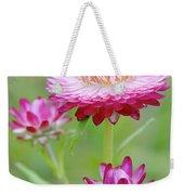Strawflower Blossoms Weekender Tote Bag