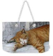 Stray Cat Sleeps On The Floor-2 Weekender Tote Bag