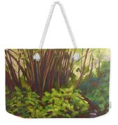 Stream Near Akaka Falls Weekender Tote Bag