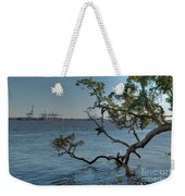 Stretching His Limbs Weekender Tote Bag