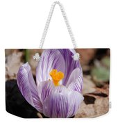 Striped Crocus Weekender Tote Bag