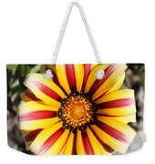 Striped Daisy Square Weekender Tote Bag